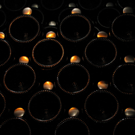 Winewall by Dan Blair - Novices Only Objects & Still Life ( wine, cellar, dark, wine bottles, bottles,  )