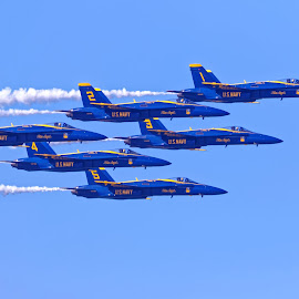 Blue Angels 748 by Raphael RaCcoon - Transportation Airplanes