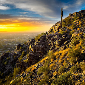 Colors Abound by Hamish Carpenter - Landscapes Mountains & Hills ( scottsdale, hills, mountains, desert, sunset, citysunset, arizona, piewasta peak, travel, landscape, travel photography, cactus )