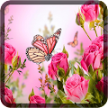 Butterfly Wallpapers for Chat APK for Ubuntu