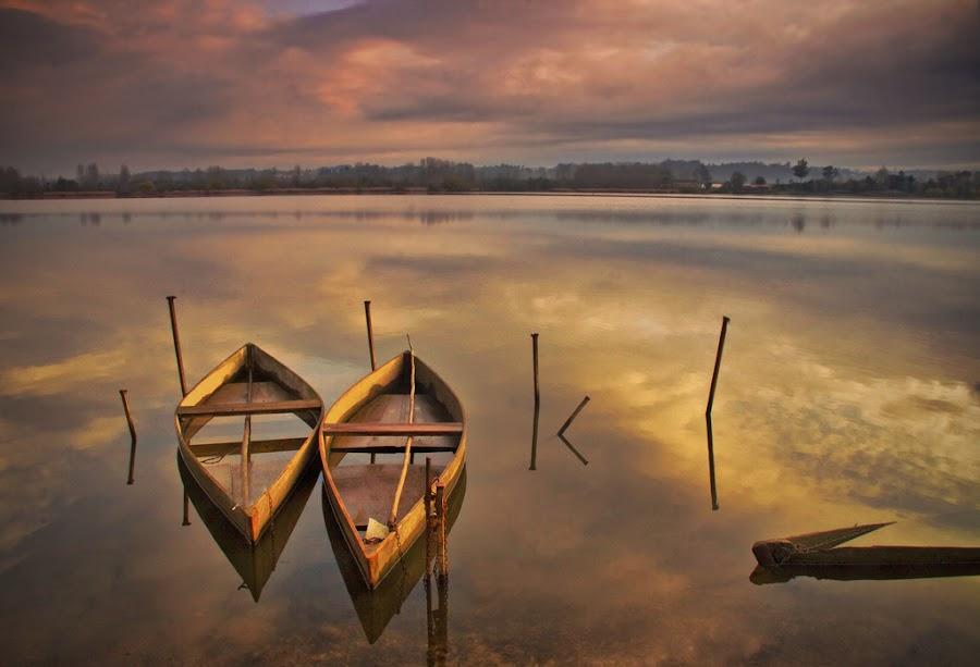 Pateira by Maria Alexandra Abrunhosa - Transportation Boats