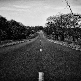 Route! by Gilberto Jr. - Digital Art Places ( cerrado, b&w, highway, route, street )