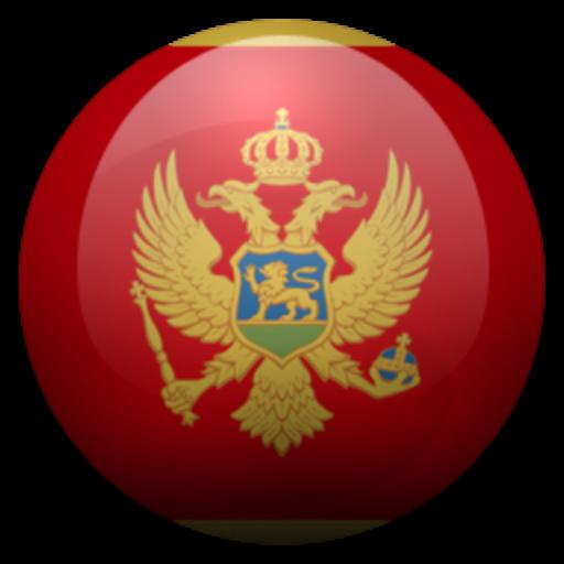 Android aplikacija Черногорский разговорник na Android Srbija