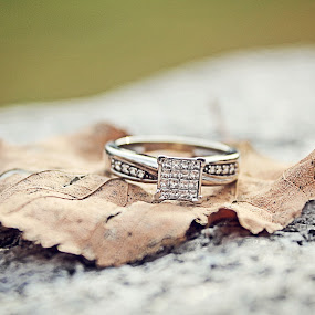 The Ring by Mallory Walsh-Ruggiero - People Couples