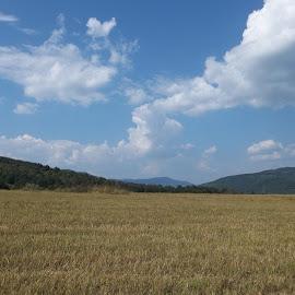 Ден by Georgi Kolev - Landscapes Prairies, Meadows & Fields ( облаци., небе., нива., хълмове., светлина. )
