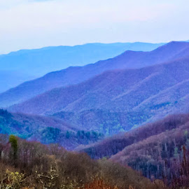 Great Smoky Mountains by Robin Stover - Landscapes Mountains & Hills