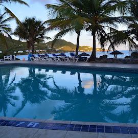 by Liz Rosas - Buildings & Architecture Office Buildings & Hotels ( pool, divi carina, st. croix, reflections, virgin islands )