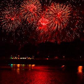 Red night sky by Gordana Trošić-Kliska - Abstract Fire & Fireworks ( fireworks, night, festival, zagreb, city )