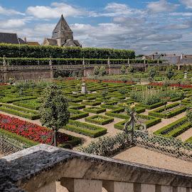 Morning at Villandry by Gary Stanley - Buildings & Architecture Public & Historical ( château de villandry, gardens, france, centre (val de loire) region, indre-et-loire department, chateau )