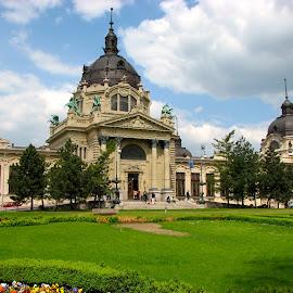 Budapest Public Baths by Lin Kelly - Buildings & Architecture Public & Historical ( baths;budapest;belle époque,  )