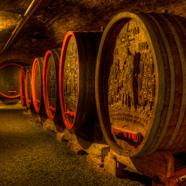 by Klaus Müller - Buildings & Architecture Other Interior ( wine, cellar, barrels, stone, historic )
