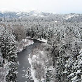 FAR ABOVE by Cynthia Dodd - Novices Only Landscapes ( water, winter, ice, snow, creek, trees, river )