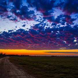 Red clouds  by Richard Wright - Landscapes Sunsets & Sunrises ( sunset delta mississippi )