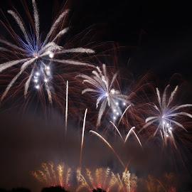 Fireworks festival by Petar Zg - Abstract Fire & Fireworks ( zg, colors, fireworks, night, panasonic, light )