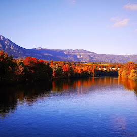 colors of autumn by Nele Hölzer - Instagram & Mobile Android ( sky, autumn, colors, trees, river )