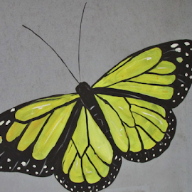 Butterfly painted on building by Terry Linton - Abstract Light Painting (  )
