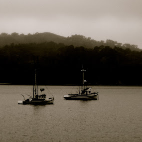 Twice as Nice by Seamus Crowley - Transportation Boats ( water, two, fog, california, boats, layers, trees, lake, boat )