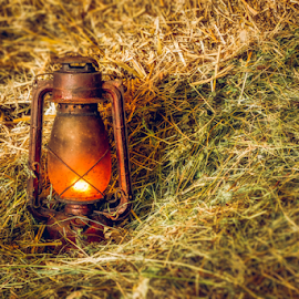 Vintage lit lamp in hay. by Roberto Sorin - Artistic Objects Antiques ( illuminated, handle, single, surface, straw, retro, equipment, petroleum, rusty, object, glow, used, rustic, flame, aged, colour, lantern, grunge, dried, metal, fuel, classic, copy, lit, planks, text, vintage, obsolete, traditional, table, burning, fire, history, kerosene, wooden, background, bulb, hay, lamp, revival, antique,  )