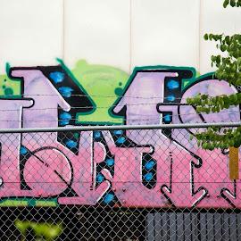 Train Art 2 by Greg Head - Novices Only Street & Candid ( fence, portland, art, spray paint, train )