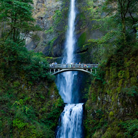 Multnomah Falls by Rob Donner - Landscapes Waterscapes ( oregon, awesome, waterfall )