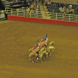 Grand Entrance by Will McNamee - Sports & Fitness Rodeo/Bull Riding ( dld3us@aol.com, gigart@aol.com, aundiram@msn.com, danielmcnamee@comcast.net, mcnamee2169@yahoo.com, ronmead179@comcast.net )