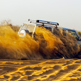desert lion safari  by Mohsin Raza - Sports & Fitness Motorsports