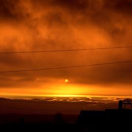 Orange Landscape  by Zhenya Philip - Landscapes Weather