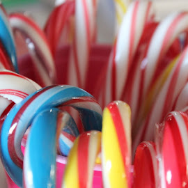 Candycanes by Liz Huddleston - Abstract Patterns ( treats, macro, colorful, christmas, candy canes )