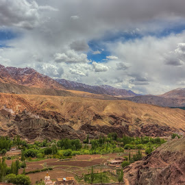 Themisang by Anil Goyal - Landscapes Mountains & Hills ( monastery, arid, india, ladakh, themisang )