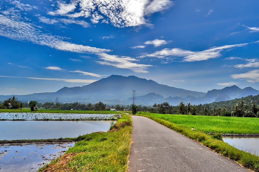 SAGO view by Achmad Tibyani - City,  Street & Park  Vistas ( payakumbuh, indonesia, sago )