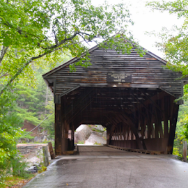 A Gem in the Forest by Liz Rosas - Buildings & Architecture Other Exteriors ( new hampshire, maine, forest, creek, covered bridge, woods, river )