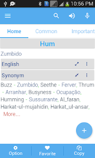 Portuguese Dictionary - screenshot