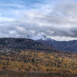 Autumn On The Marsh by Patricia Phillips - Landscapes Travel ( autumn marsh potter alaska )