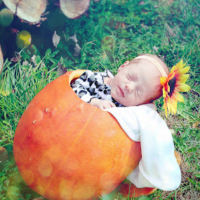 peyton by Autumn Horton - Babies & Children Babies ( orange, sweet, autumn, pumpkin, fall, pwcpumpkins, baby, cute, bokeh, flower )