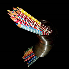 Curvature by Darcie Wright - Artistic Objects Other Objects ( pencils slinky mirror colored colors colorful curve )