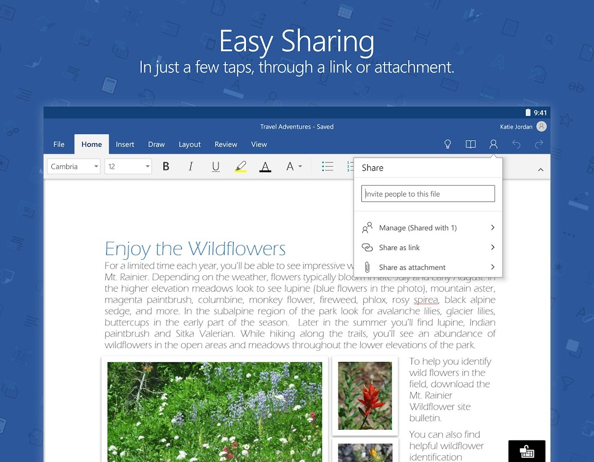 Microsoft Word Screenshot 9
