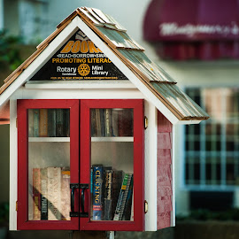 World's Smallest Library by Garry Dosa - Artistic Objects Other Objects ( books, building, red, library, architecture )