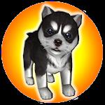 PuppyZ Dog - Virtual Pet Icon
