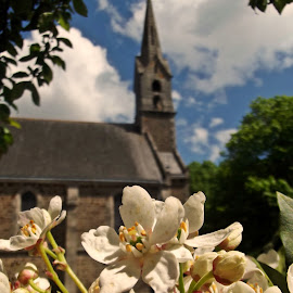 Brittain church by Ciprian Apetrei - City,  Street & Park  Historic Districts ( church, park, traditional, brittany, flowers )
