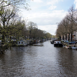 Prinsengracht, Amsterdam by Anita Berghoef - City,  Street & Park  Historic Districts ( houseboats, ship, houseboat, the netherlands, prinsengracht, ships, amsterdam, spring, canal, city )