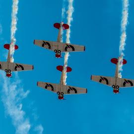 Harvard Air Display by Johan Jooste Snr - Transportation Airplanes ( aircraft, harvard, display, planes, smoke, namibia )