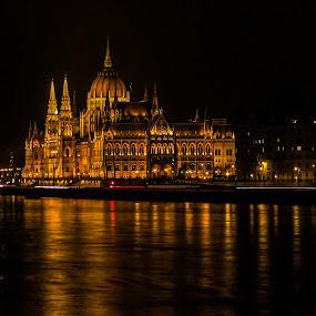 Hungarian Parliament Building by Estislav Ploshtakov - Buildings & Architecture Public & Historical (  )
