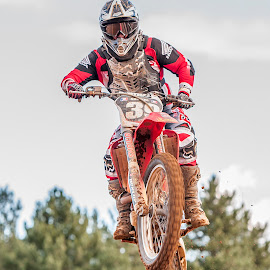 Flying High by Lynne Luxon-Jones - Sports & Fitness Motorsports ( honda, motocross, ditbikes, air, mx )