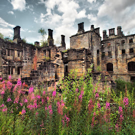 Dunmore House by Martin Hughes - Buildings & Architecture Decaying & Abandoned ( dunmore house )