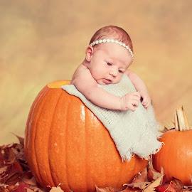 Pumpkin Cutie by Jenny Hammer - Babies & Children Child Portraits ( girl, autum, leave, pumpkin, baby )