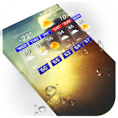 Download Accurate Daily Weather Report APK on PC