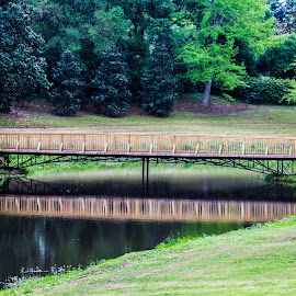 Bridge Over Calm Waters by S Trevathan - City,  Street & Park  City Parks ( water, nature, park, outdoors, bridge, relax, tranquil, relaxing, tranquility )