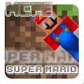 Mod Super Marios Bros MCPE