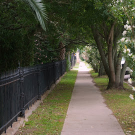 Sidewalk by Brenda Shoemake - City,  Street & Park  Neighborhoods