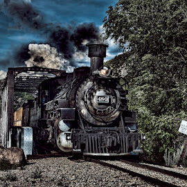 Durango Bridge by Lisa Coletto - Transportation Trains ( coal, locomotive, steam train, train, narrow gauge )